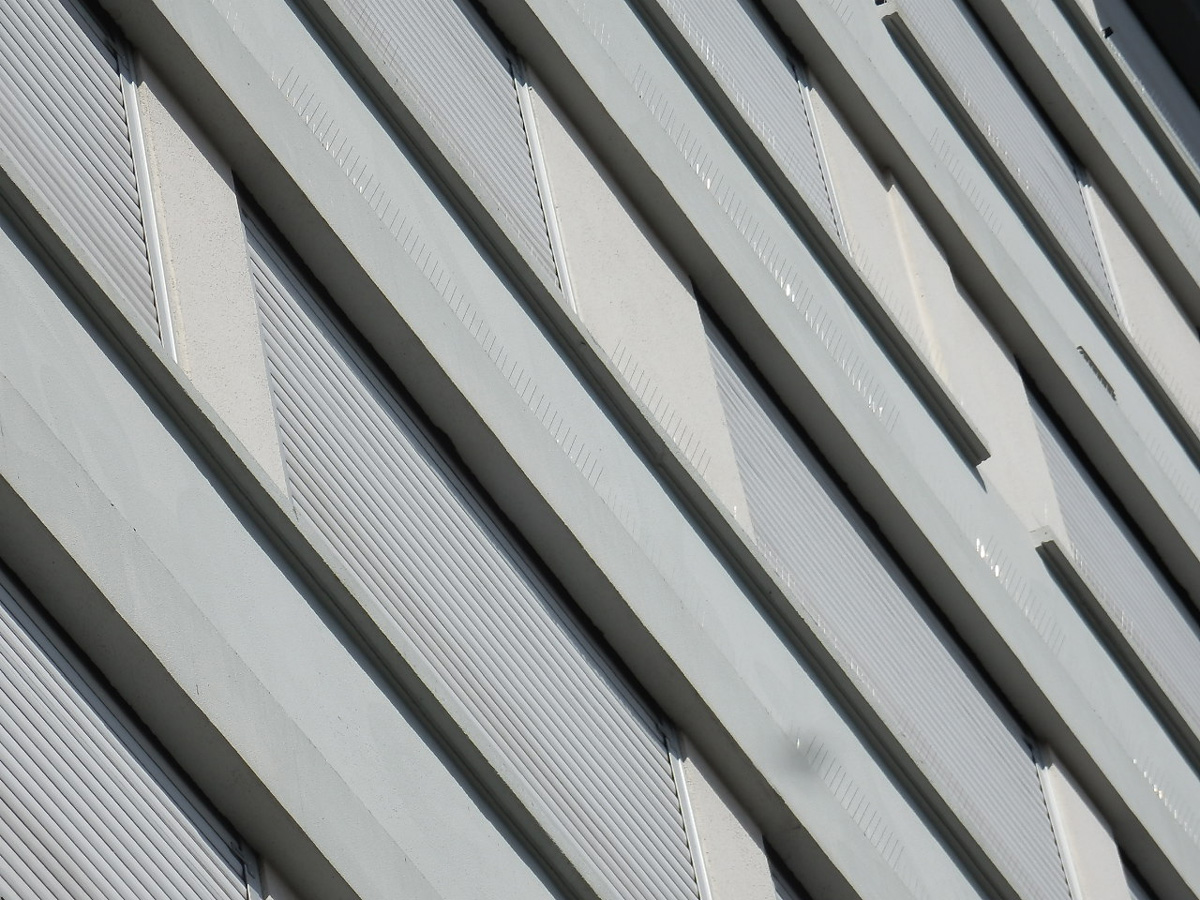 pics-anti-pigeons-Clermont-Ferrand